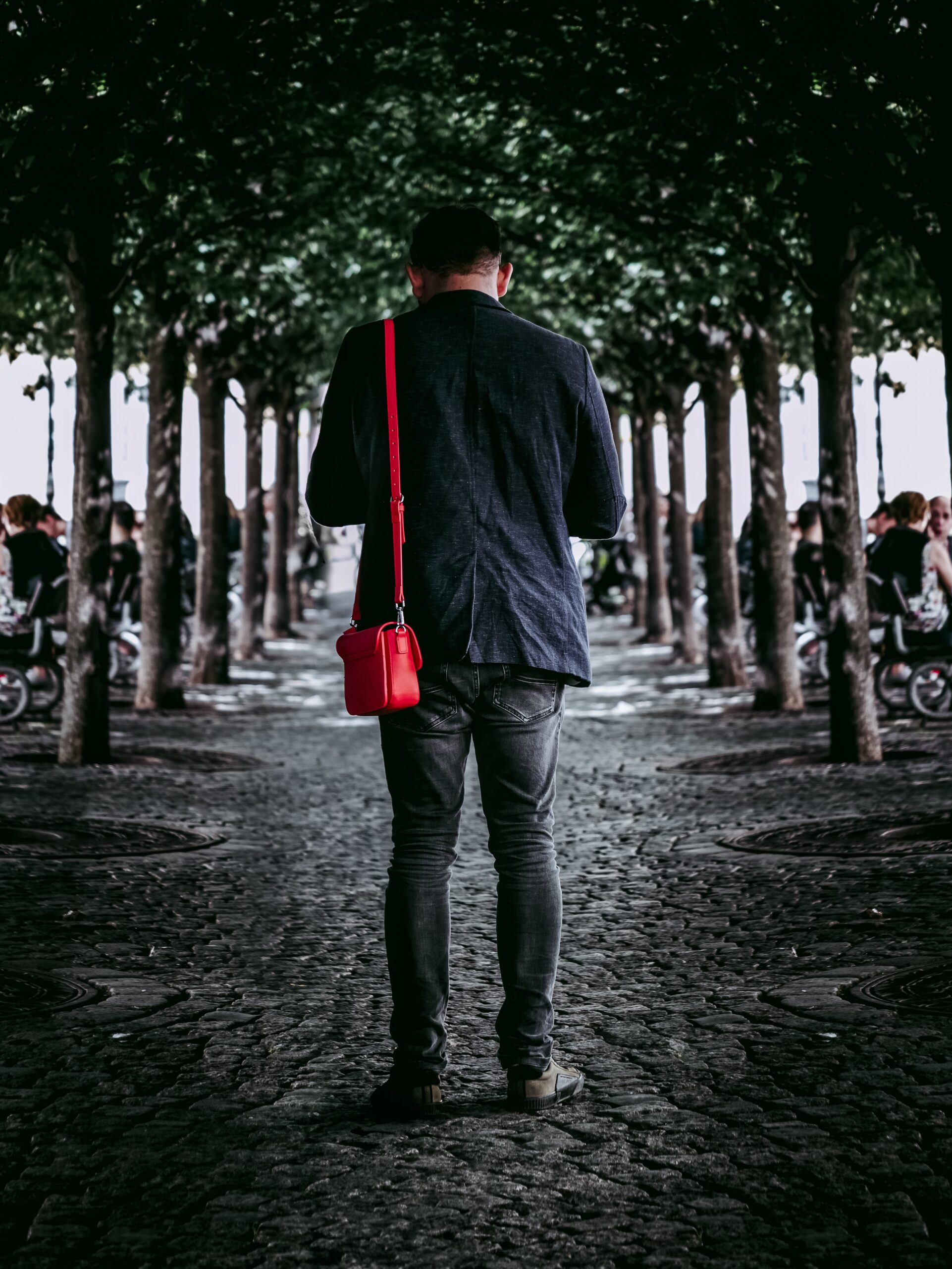 man standing between row of trees with back to the camera looking at his phone